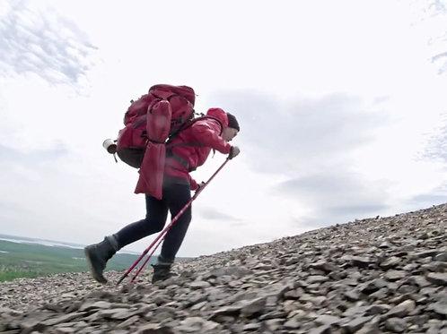 Climbing walking trekking sticks