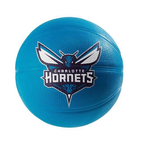 Mini basketball HORNETS 🐝
