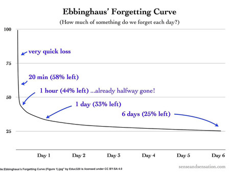 Understanding the Forgetting Curve
