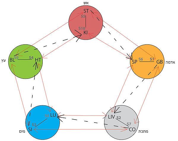 חמשת האלמנטים גזעים וענפים