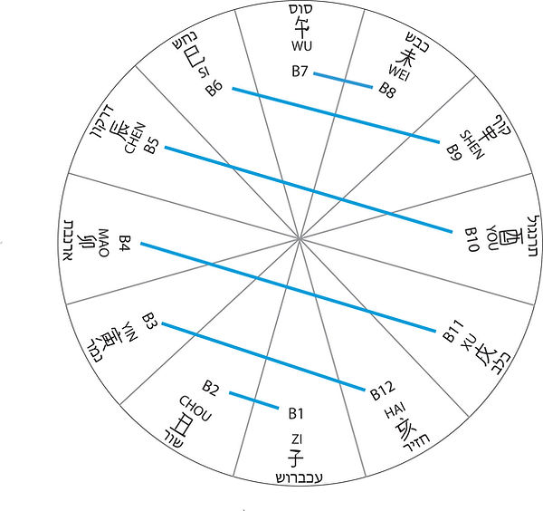 קומבינציות וקשרים הרמוניים בין 12 הענפים הארציים ברפואה ובאסטרולוגיה הסינית