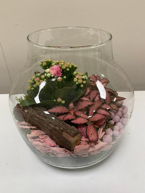 Plantenschaal in Glaswerk