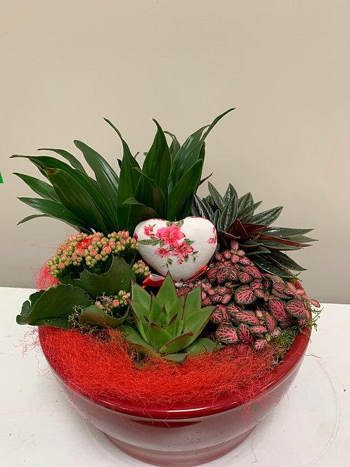 Plantenschaal rood