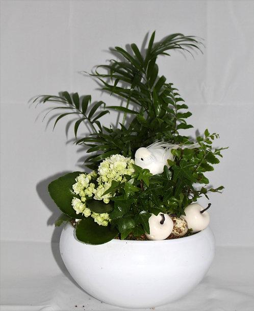 Kopie van Schaal met planten