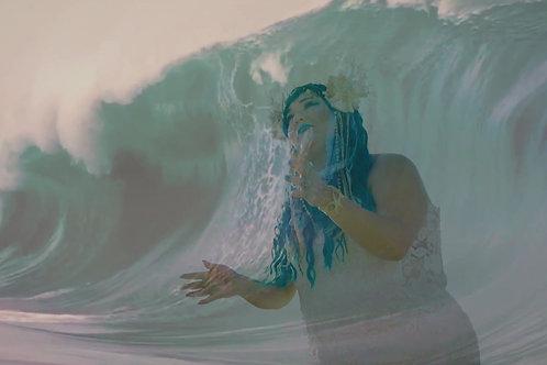 Tidal Wave EP Album - CD