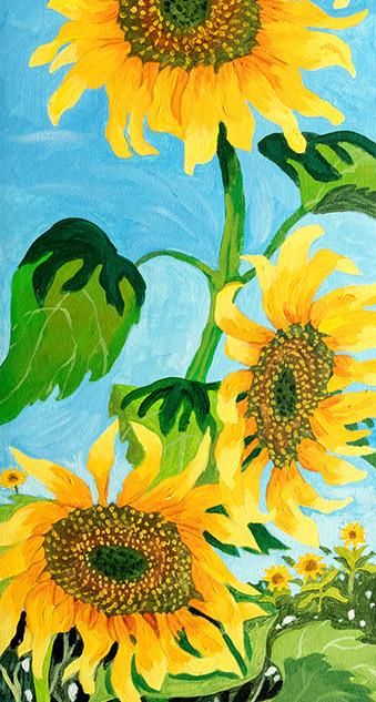 """Sunflowers Standing Tall"""
