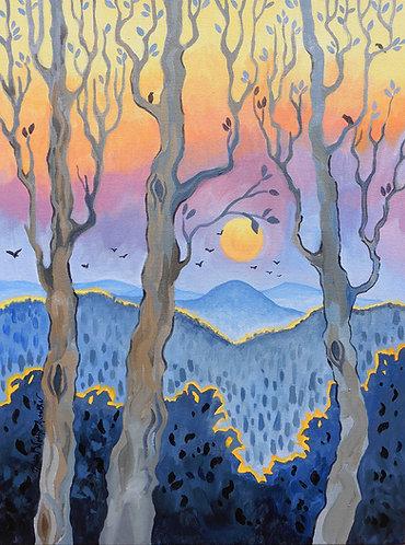 Grey Trees & Sunset