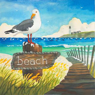 Seagull Beach Sign
