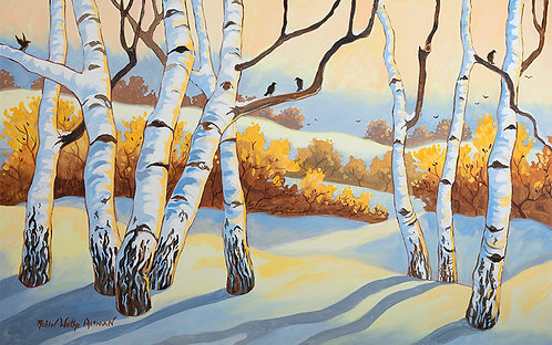 """Birch Trees in Winter"""