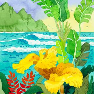 Yellow Cannae