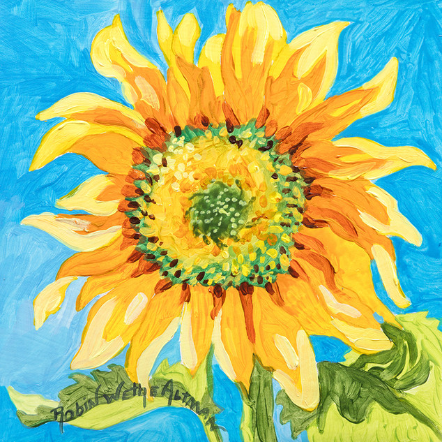 Einstein Sunflower