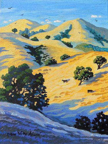 California Hills and Oaks