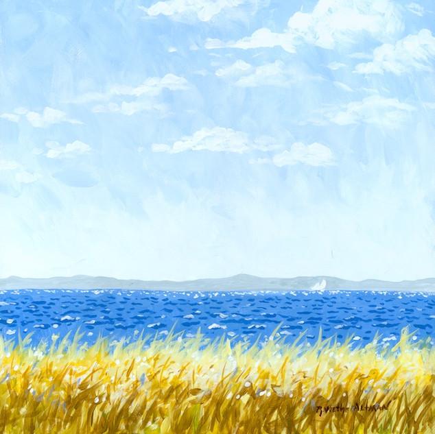 Earth Sea and Sky