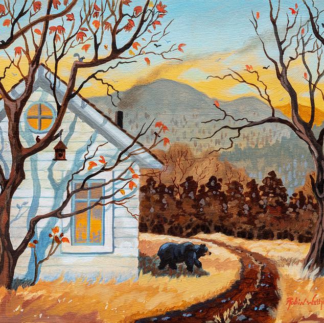 Our Black Bear Neighbor