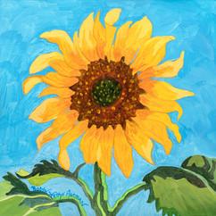 Lone Sunflower