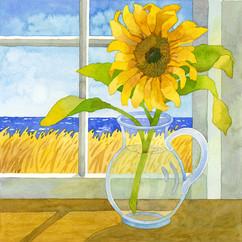 Sunflower in the Window