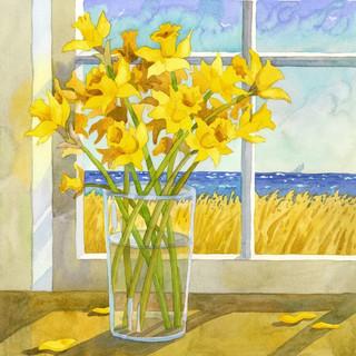Daffodiles in the Window