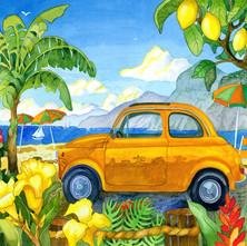Car in Capri