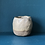 Thumbnail: Small Yogurt Pot