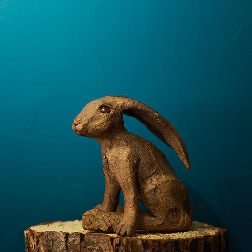 Hare No.36