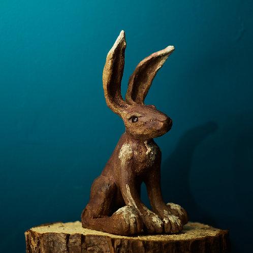 Hare No.40