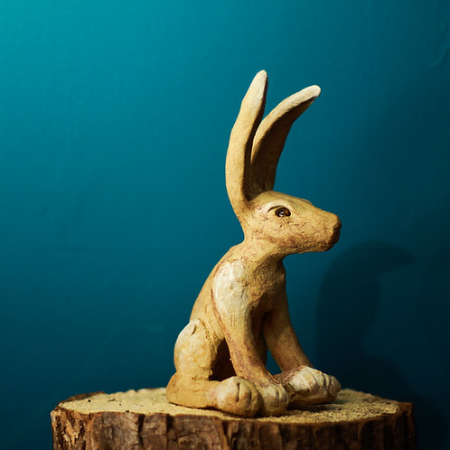 Hare No.43