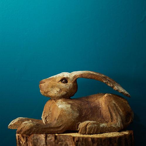 Hare No.45