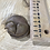 Thumbnail: Curled up cat