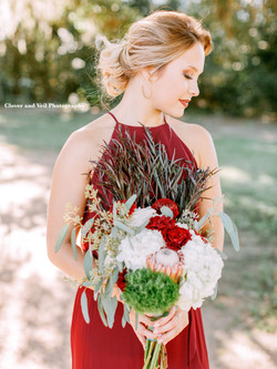 Clover and Veil Photography