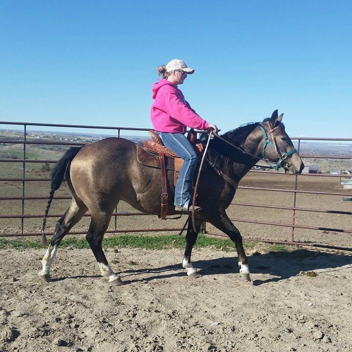 Ashley Quarter Horse training