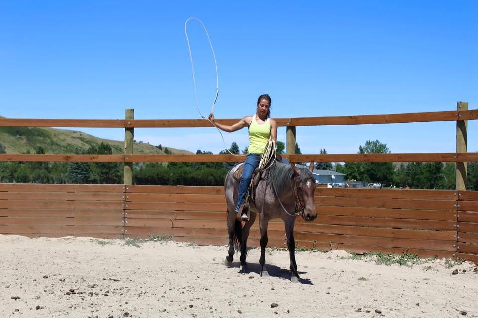Ashley Quarter Horse roping
