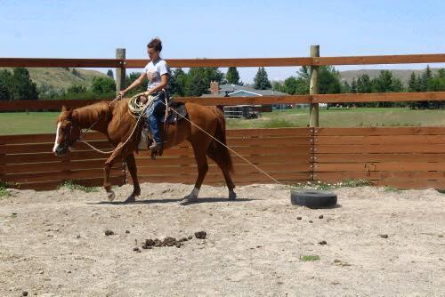 Ashley Quarter Horse sorrel