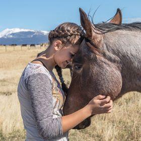 Ashley Quarter Horse Colt