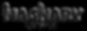 ImaginaryStudio_logo_color_concept-01.pn