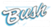 Bush Heating and Air Conditioning Logo