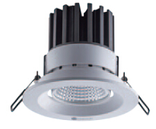 DL2C Series Adjustable Downlight
