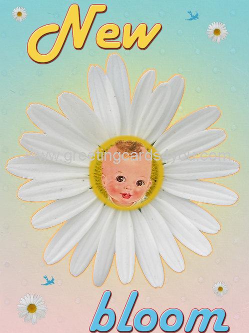 5720160015 - New bloom