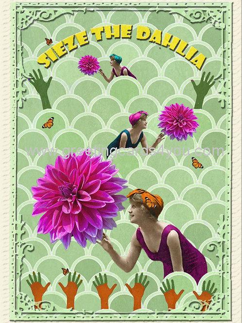 5720150031 - Sieze the Dahlia