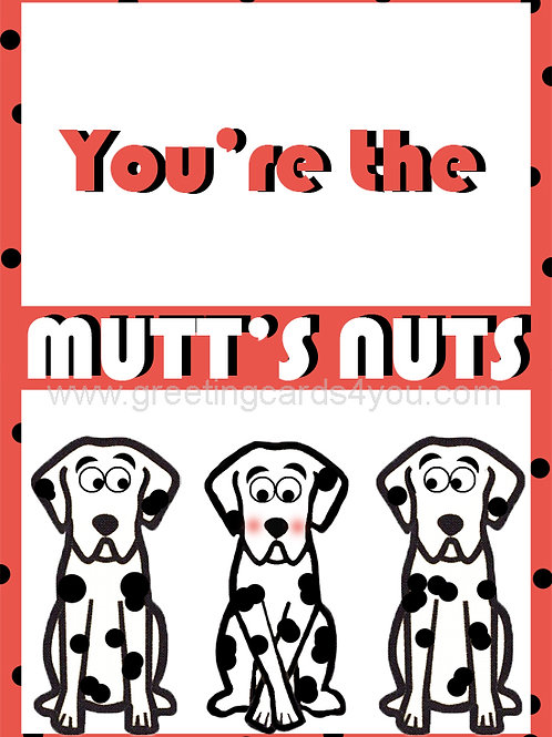 5720190034 - You're the mutt's nuts