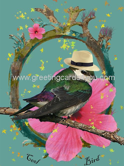 5720130107 - Cool Bird