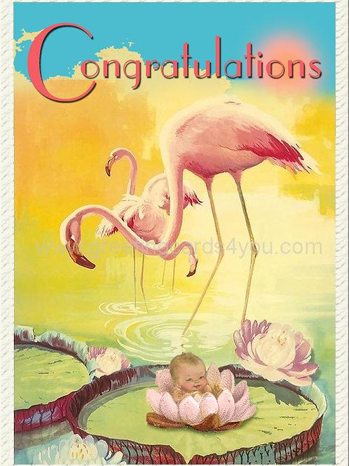 5720210015 - Congratulations (baby)