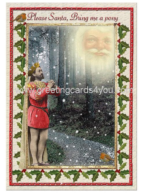 5720150018x - Please santa bring me a pony