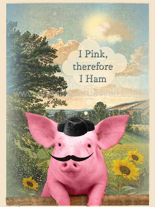 5720150028 - The Philosophical Spanish Pig
