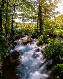 Plitvice-Lakes-Waterstream-Webpic_1600x1