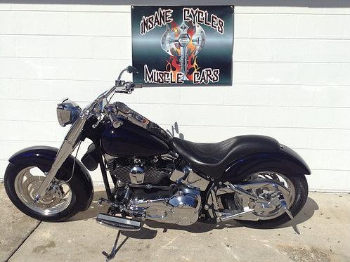 2002 Purple Harley-Davidson FLSTF