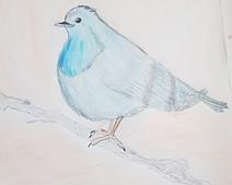 Bird3.png