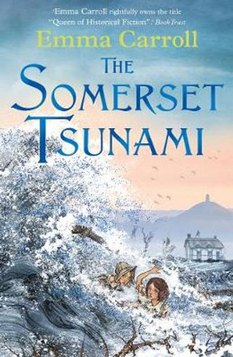 somerset tsunami.jpg