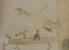 Bird5.png