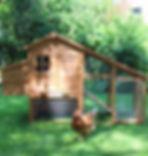huhnerhaus-bertha-144-2097-zoo-144.jpg