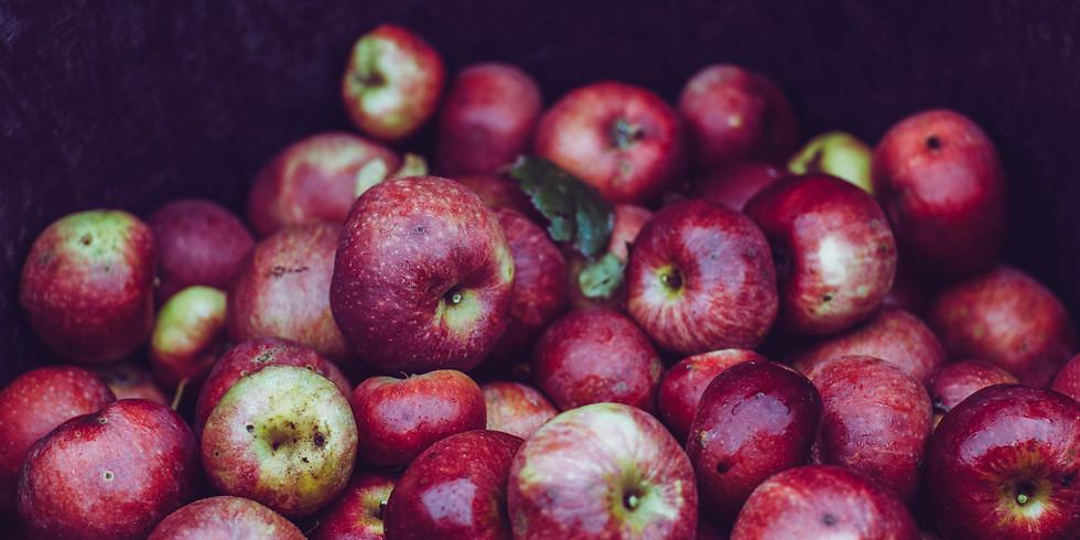 Harvest Food & Drink Feastival